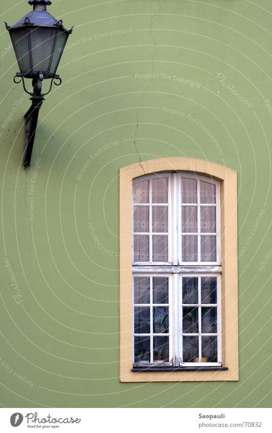 Fenster zum Hof Laterne grün Potsdam Gardine abweisend Kaktus Mauer Riss Außenaufnahme Rahmen schmiedeeisern