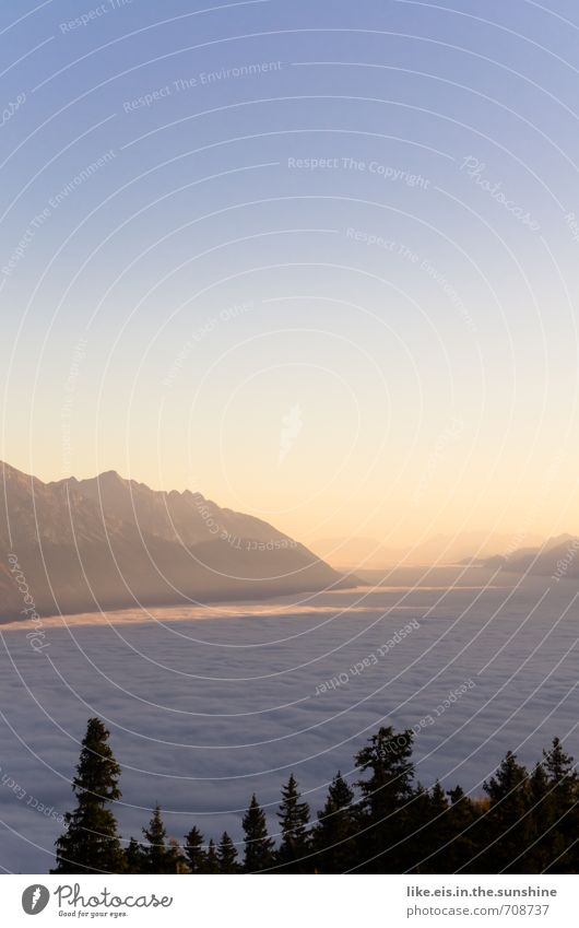 guten morgen aus den alpen! Natur Ferien & Urlaub & Reisen Sommer Einsamkeit Erholung Landschaft ruhig Wolken Ferne Wald Umwelt Berge u. Gebirge Freiheit Glück