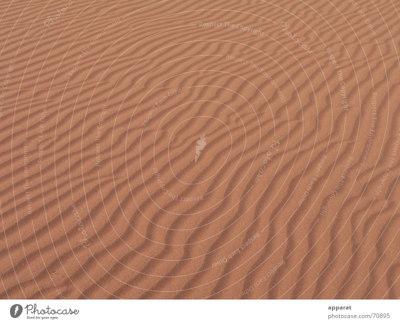 Wellen im Sand rot Einsamkeit Ferne Wärme leer Wüste Physik heiß trocken Dürre Südafrika Namibia Glut Sahara