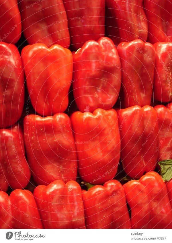 Blick in den Kühlschrank rot Ernährung glänzend Gemüse Reihe Stapel Paprika 19 Vegetarische Ernährung