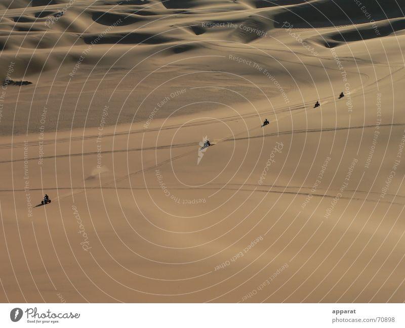 Wüstenkette Freiheit Sand Wüste Stranddüne Kette Namibia