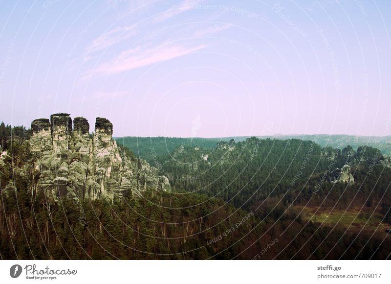 versteckter Dinosaurier Natur Ferien & Urlaub & Reisen Landschaft Ferne Wald Berge u. Gebirge natürlich Freiheit außergewöhnlich Felsen Tourismus Idylle groß