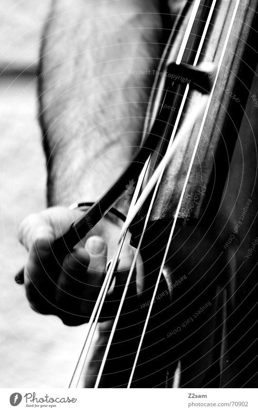 strings jump Saite Musik Mann Hand Cello Spielen Finger Kontrabass Bogen play Schwarzweißfoto street munich