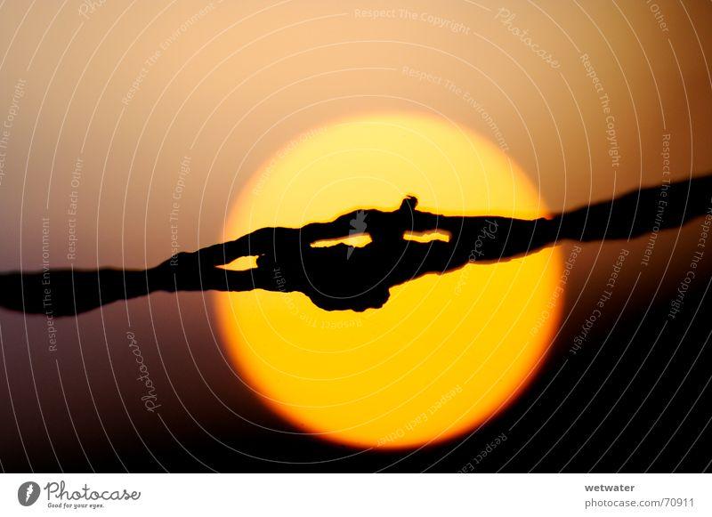 Stacheldraht vor Sonne Sonne schwarz gelb orange Romantik