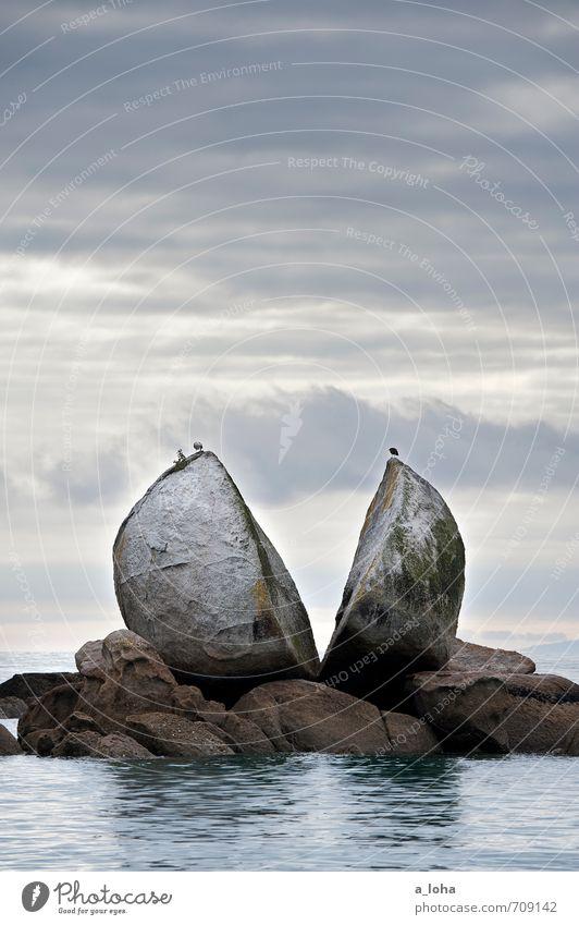 AP PLE Umwelt Natur Pflanze Tier Urelemente Wasser Himmel Wolken schlechtes Wetter Felsen Küste Meer Vogel 2 Stein Kugel außergewöhnlich natürlich Fernweh