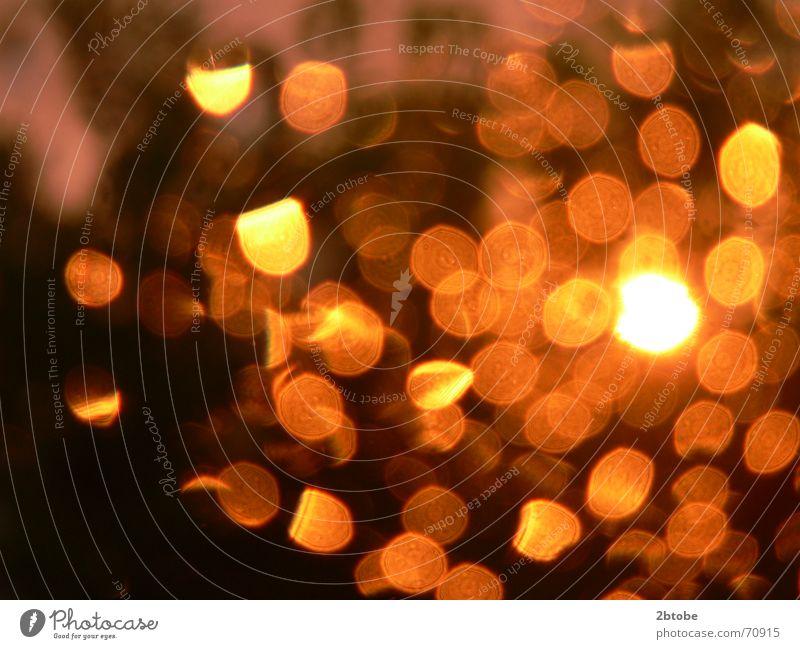 please reflect these summerdays! Baum Sonne rot gelb dunkel Fenster Regen orange Wetter gemütlich Foyer Fensterscheibe Lichtspiel Abendsonne Sommerabend