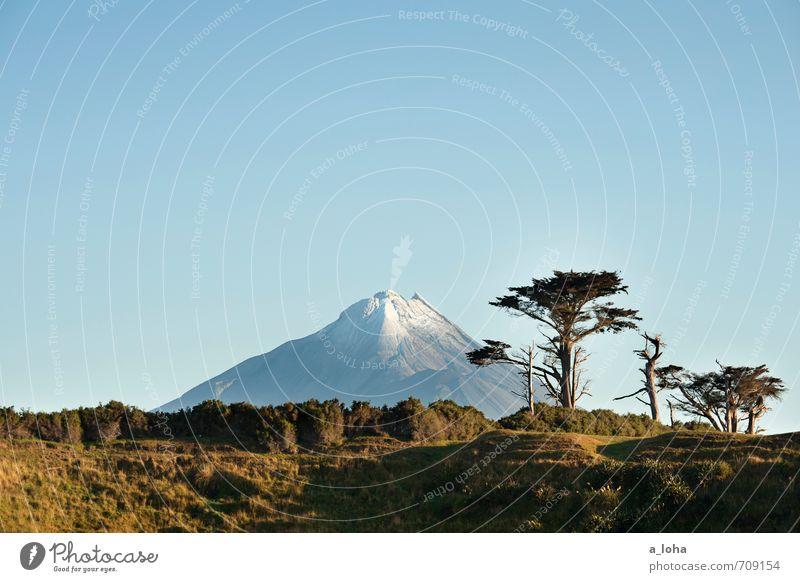 Te Maunga o Taranaki IV Umwelt Natur Landschaft Pflanze Urelemente Wolkenloser Himmel Horizont Sonnenlicht Sommer Schönes Wetter Baum Gras Sträucher
