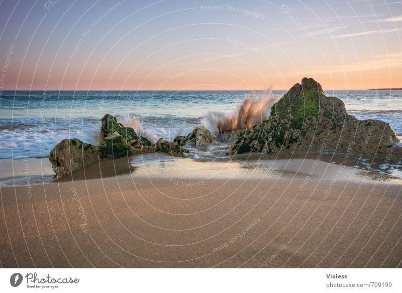 Sehnsucht Ferien & Urlaub & Reisen Freiheit Sommer Sommerurlaub Strand Meer Wellen Natur Landschaft Sand Wasser Sonnenaufgang Sonnenuntergang Schönes Wetter