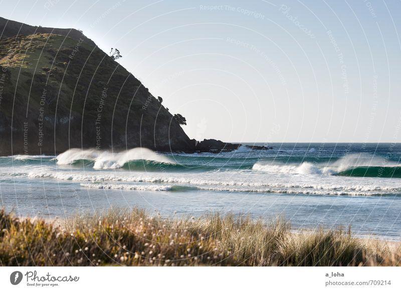 far north Umwelt Natur Landschaft Pflanze Urelemente Wasser Wolkenloser Himmel Horizont Sommer Schönes Wetter Wärme Gras Wellen Küste Strand Meer natürlich blau