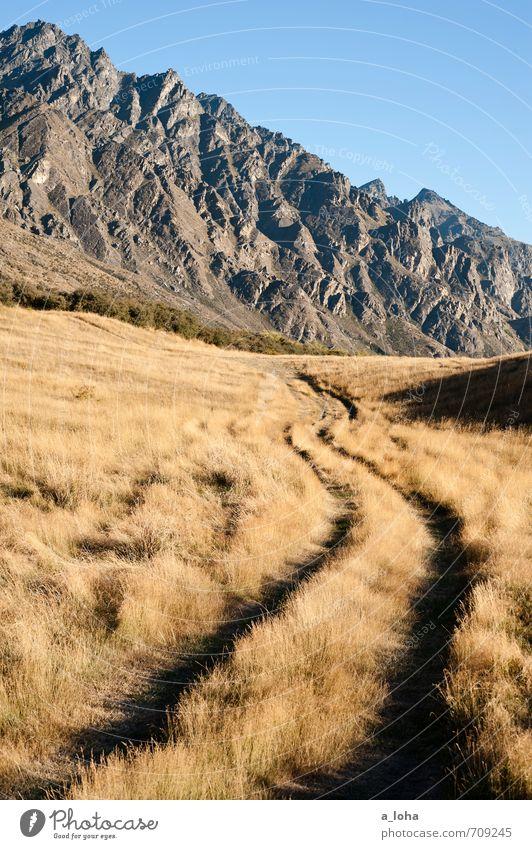 The Remarkables Umwelt Natur Landschaft Urelemente Erde Himmel Wolkenloser Himmel Sommer Schönes Wetter Gras Felsen Berge u. Gebirge Gipfel Wege & Pfade blau