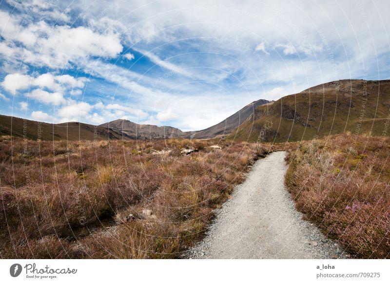 Auf nach Mordor* Umwelt Natur Landschaft Pflanze Urelemente Erde Himmel Wolken Horizont Herbst Schönes Wetter Blume Gras Sträucher Moos Berge u. Gebirge Gipfel