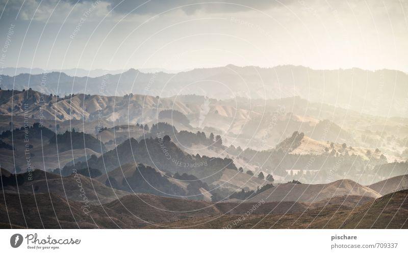 Landschaft Natur Himmel Horizont Hügel ästhetisch eckig exotisch Abenteuer Ferien & Urlaub & Reisen Neuseeland Farbfoto Außenaufnahme Dämmerung Lichterscheinung