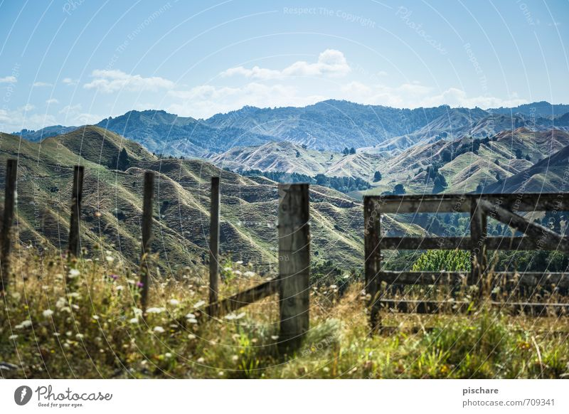 Dritter Berg Rechts Natur Ferien & Urlaub & Reisen Landschaft Berge u. Gebirge Gras Schönes Wetter Abenteuer Hügel Zaun Neuseeland