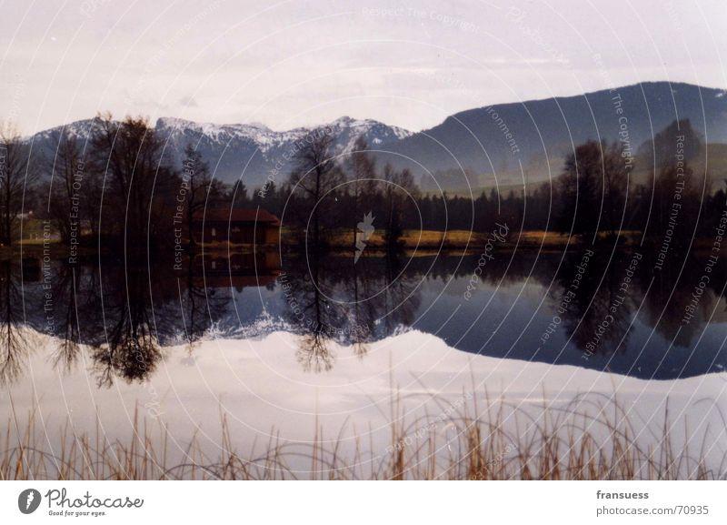 bayrisches idyll im wasserspiegel Oberammergau See Reflexion & Spiegelung Bayern Baum Sträucher Landschaft Berge u. Gebirge Alpen Natur Idylle