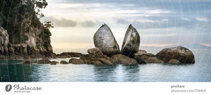 Fel sen Natur Landschaft Wasser Wolken Horizont Felsen Küste Meer außergewöhnlich Abenteuer bizarr Ferien & Urlaub & Reisen Neuseeland split apple rock