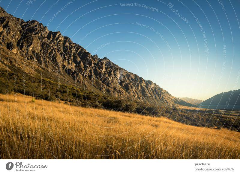 Remarkables / Day Natur Ferien & Urlaub & Reisen Landschaft Berge u. Gebirge Wiese außergewöhnlich Schönes Wetter Abenteuer Wolkenloser Himmel Neuseeland