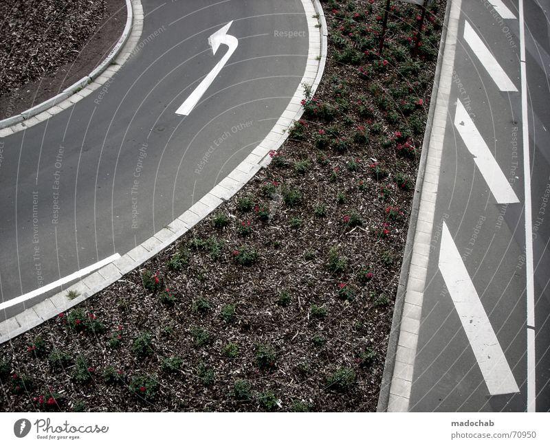 TUNE IN...| strasse pfeile verkehr markierung muster abstrakt Natur Ferien & Urlaub & Reisen weiß Stadt Pflanze Blume Straße Bewegung Wege & Pfade grau Linie