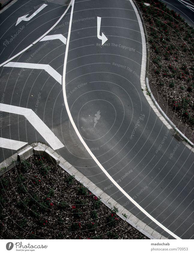 DROP OUT! | strasse pfeile verkehr markierung muster abstrakt Natur Ferien & Urlaub & Reisen weiß Pflanze Blume Straße Bewegung Wege & Pfade grau Linie