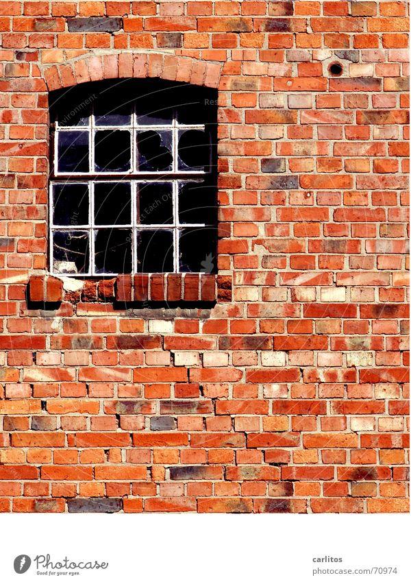 Steinreich Mauer rot Backstein Fuge Fenster Handwerk Verfall klinkerwand stichbogen gussfenster metallfenster Glas glasbruch stallfenster Handarbeit Renovieren