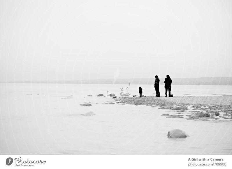 AST 7 l am Rande Mensch 3 Umwelt Natur Landschaft Himmel Wolken Frühling Wetter Nebel Seeufer Strand Zusammenhalt untersuchen Dunst trist entdecken