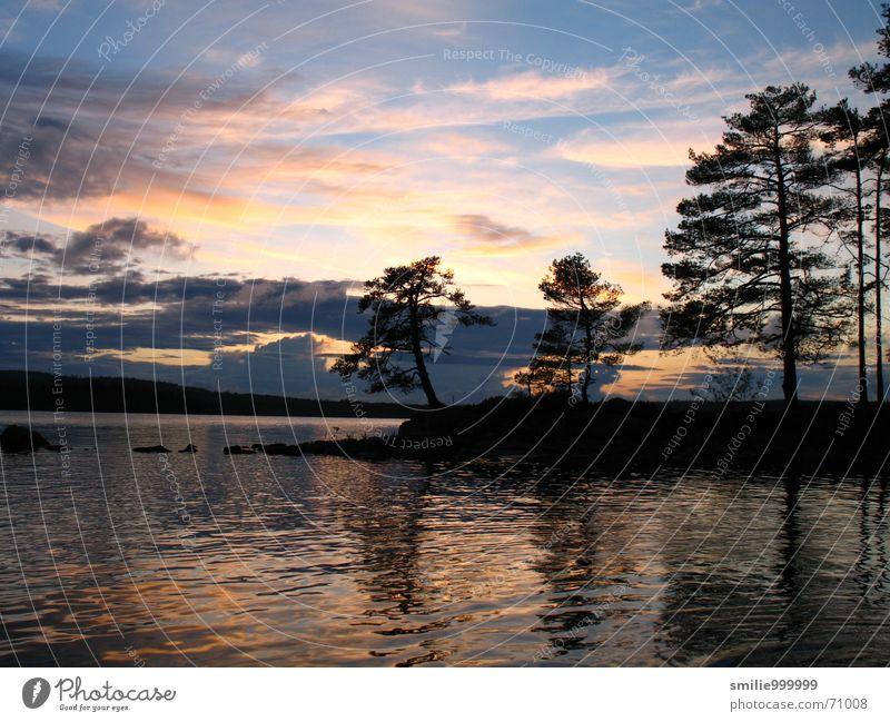 Sonnenuntergang in Schweden Wasser Baum Wolken See Romantik