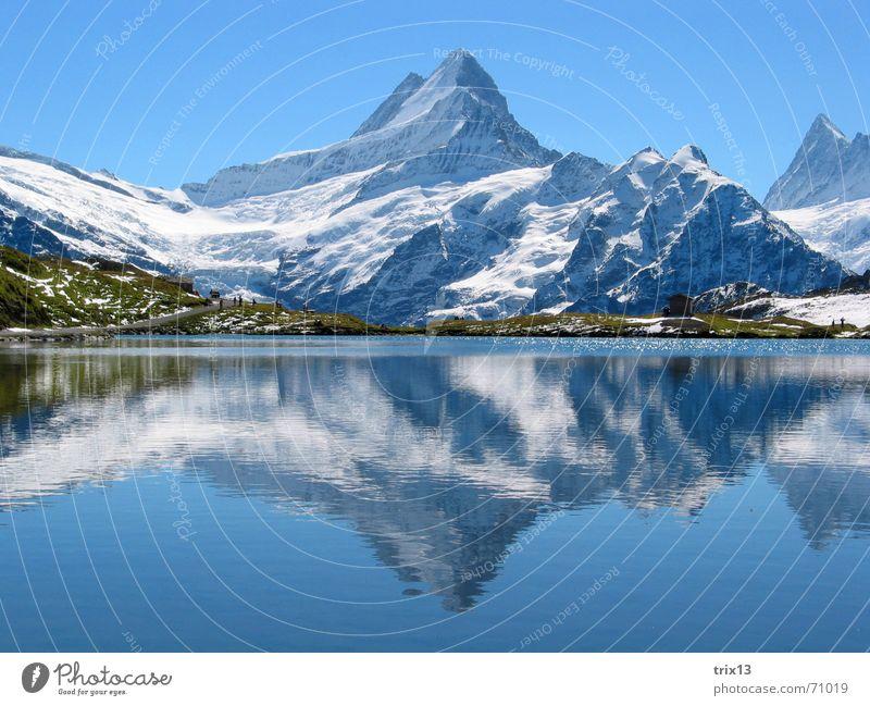 Schreckhorn Natur Wasser Himmel weiß blau Schnee Wiese Berge u. Gebirge See groß Aussicht Alpen Spitze Idylle Horn