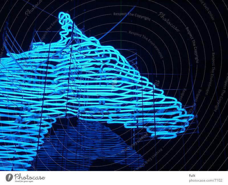 neonpferd Leuchtstoffröhre Stil Licht Pferd Fototechnik blau