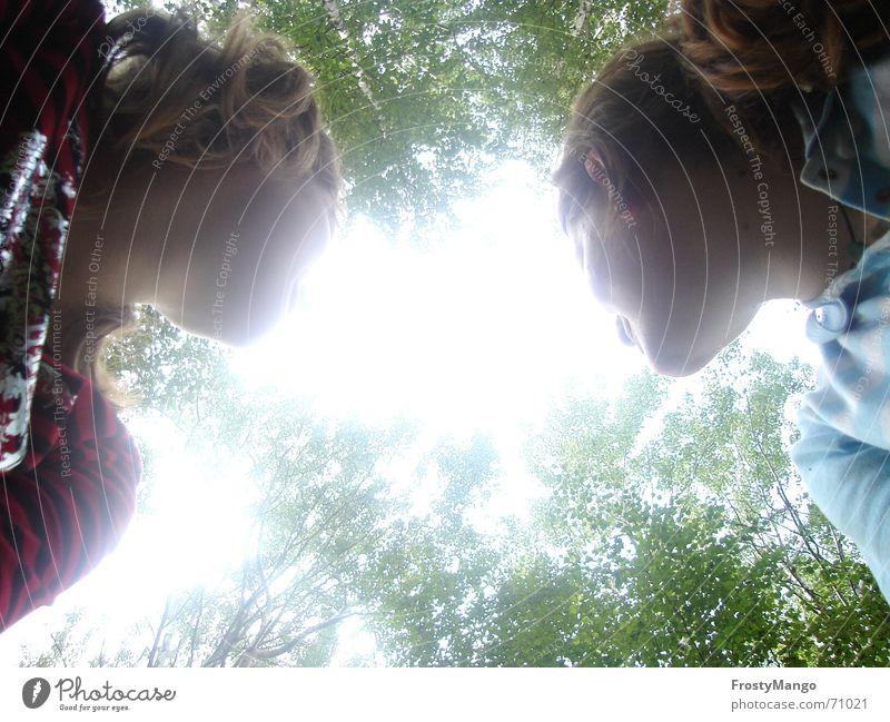 Look up to the heaven Jugendliche Himmel Baum Sonne Wald Baumkrone