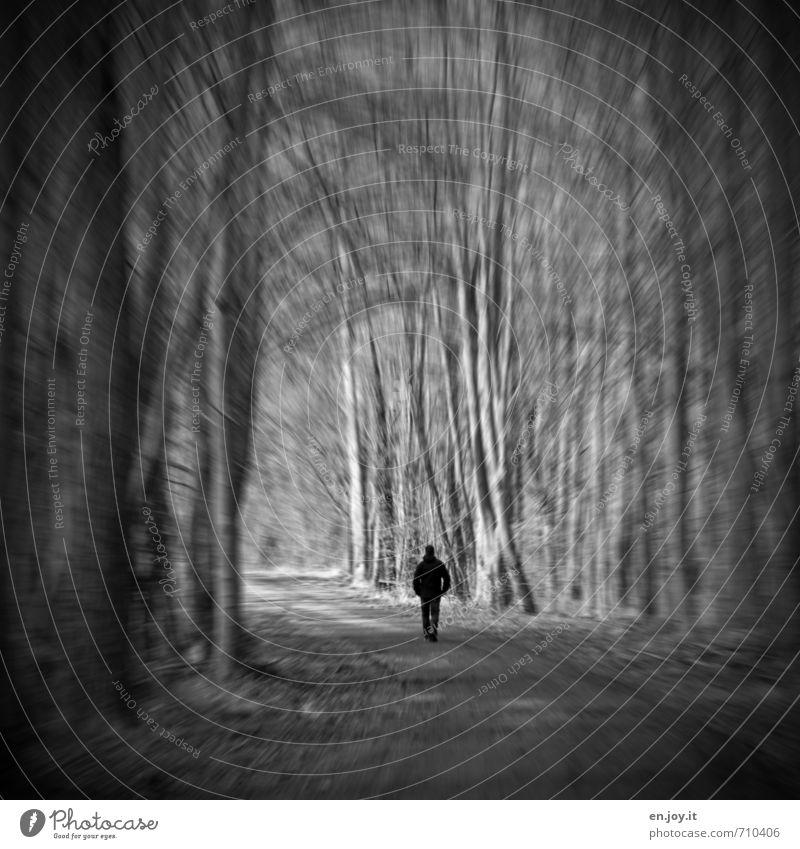 alleine Krankheit Rauchen Rauschmittel Alkohol Medikament Mensch Mann Erwachsene 1 Wald träumen Traurigkeit bedrohlich dunkel gruselig Gefühle Stimmung Sorge