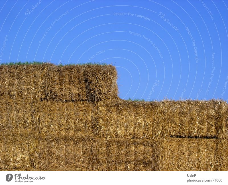 Legespiel Himmel blau gelb gold Landwirtschaft Ernte Rechteck Stroh eckig