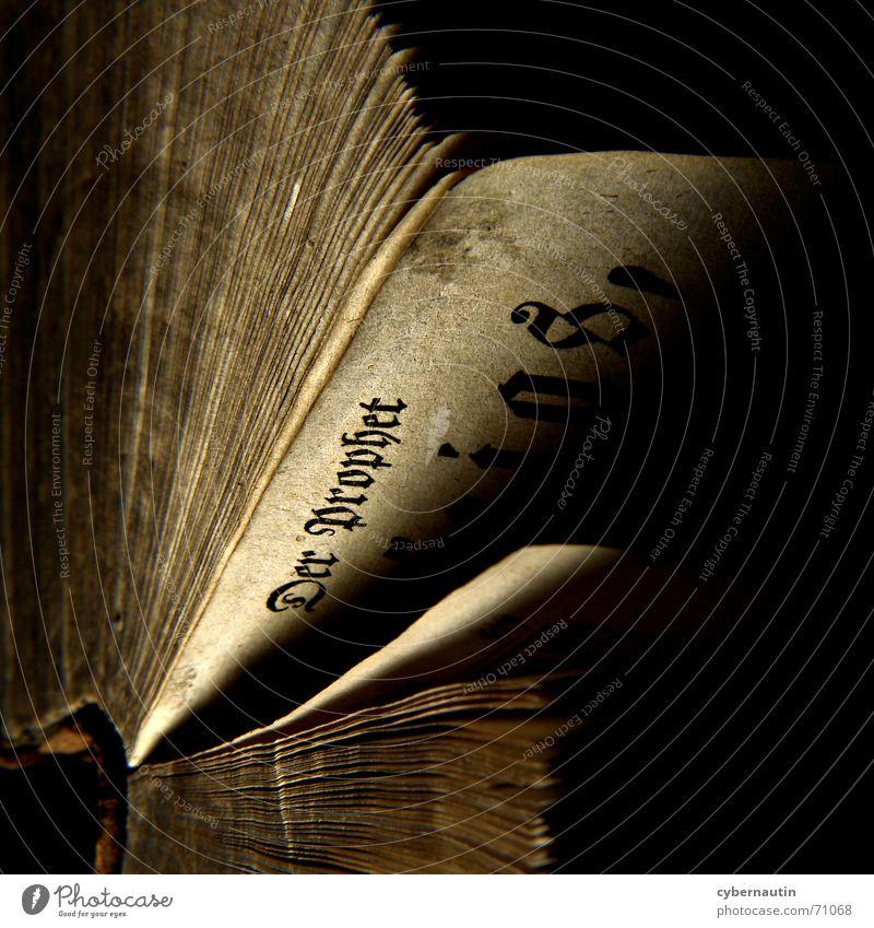 Prophezeihungen alt Buch lesen Buchstaben Seite Typographie antiquarisch biblisch