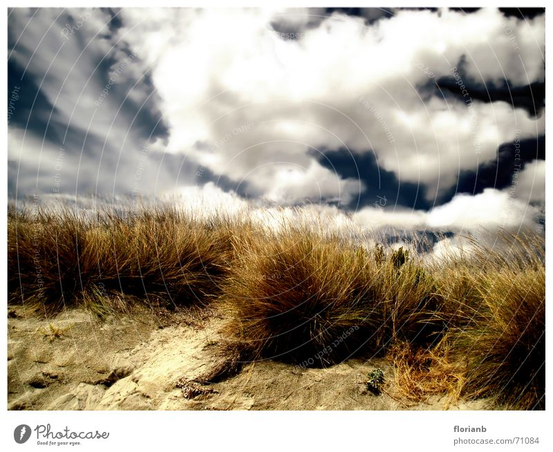 Griechenlands Weiten Himmel blau Ferien & Urlaub & Reisen Wolken gelb Gras Sand Landschaft braun Küste Europa bearbeitet Grasbüschel