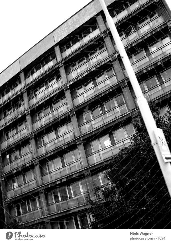 Im Osten nix neues Haus Fenster grau Wohnung Armut Beton Hochhaus Sträucher Laterne Prag Schulausflug