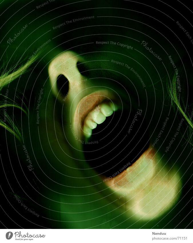 Schrei aus der Tiefe Nase Mund schreien bedrohlich gruselig verrückt grün Gefühle Trauer Tod Angst gefährlich Verzweiflung Ende Monster Wasserleiche Seele