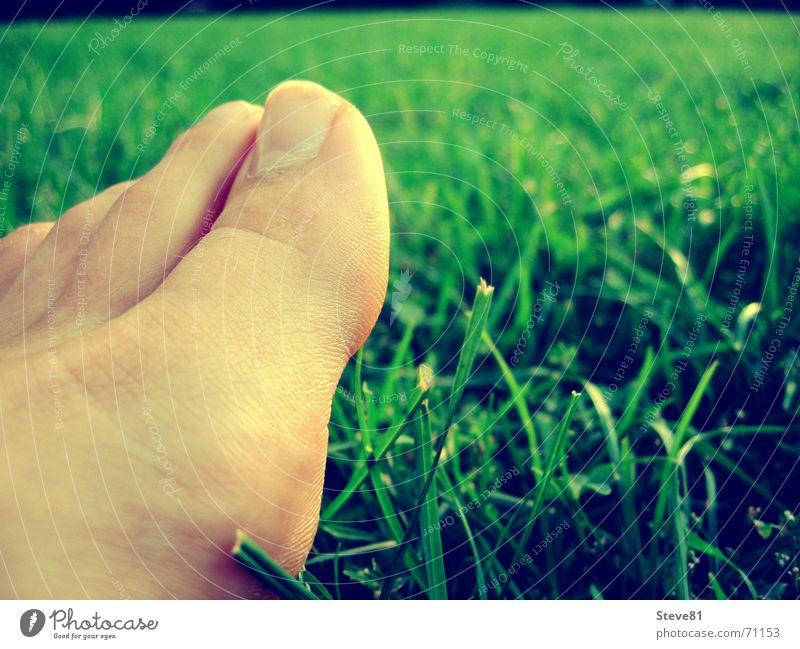 feet me grün Erholung Wiese Fuß Zehen
