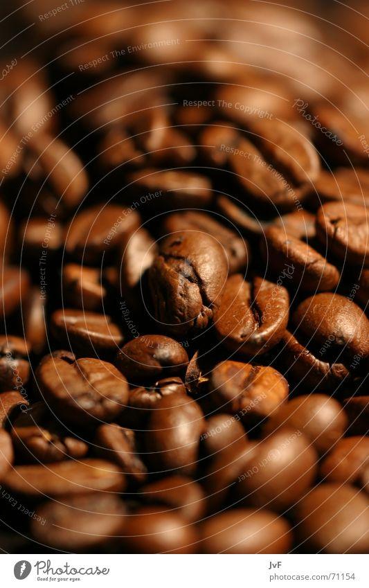 riechst du den duft? Kaffeebohnen Koffein Café braun Geschmackssinn Brunch Heißgetränk Bohnen aromatisch Duft Tee rösten