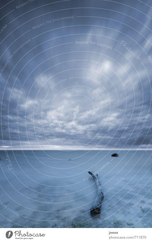 Die Ruhe im Sturm Himmel blau weiß Wasser Landschaft ruhig Wolken schwarz dunkel Umwelt Frühling Holz natürlich Horizont Wind Seeufer