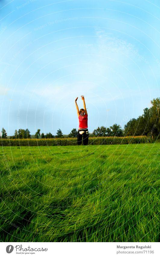 In den Himmel Natur Sommer springen Wetter Fröhlichkeit Schönes Wetter hüpfen Gute Laune