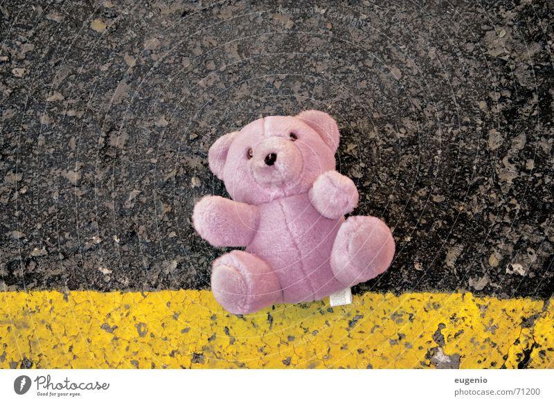 teddy bear rosa teddybear small teddybear pink bear rectangular rectangular size road road crash a pink nice teddy bear outdoor shooting
