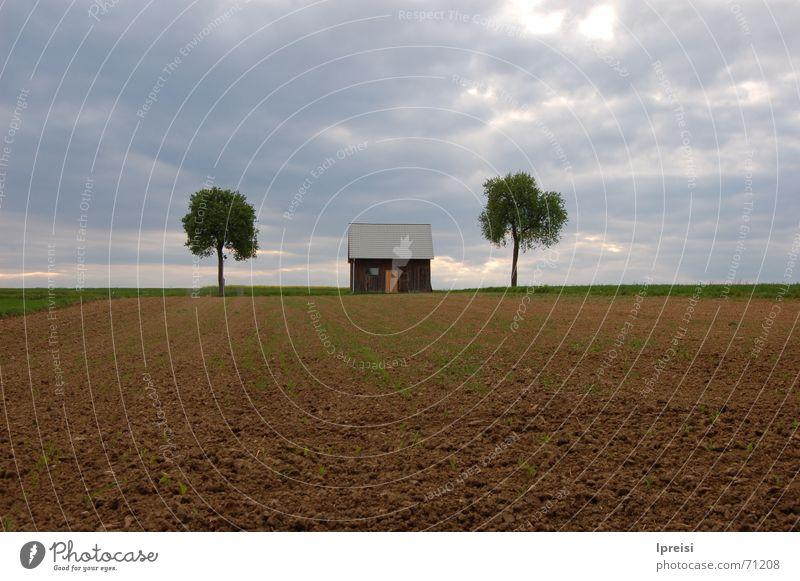 Countryside Himmel Baum Haus Wolken Einsamkeit dunkel Feld Amerika schlechtes Wetter