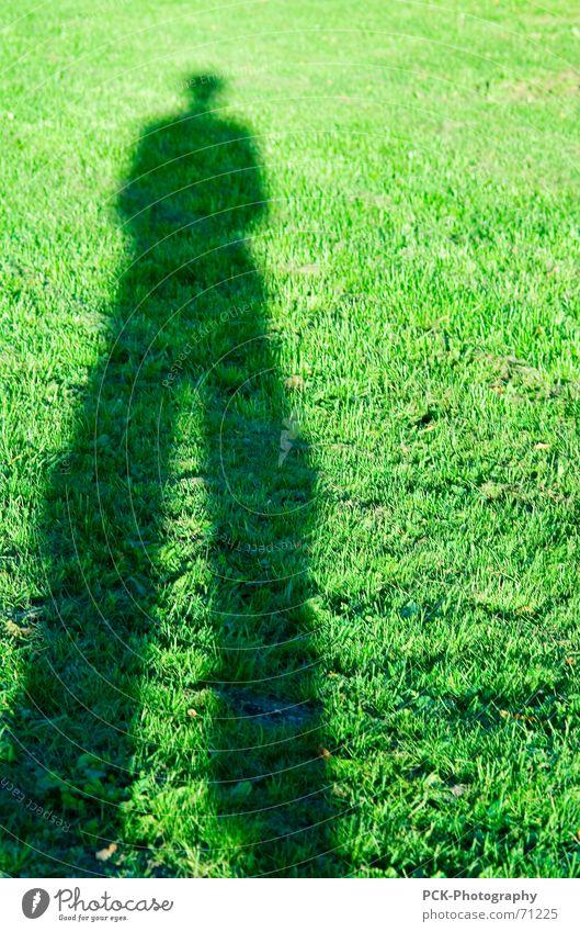 schattenmann Mann grün Wiese Perspektive lang Richtung Wegweiser