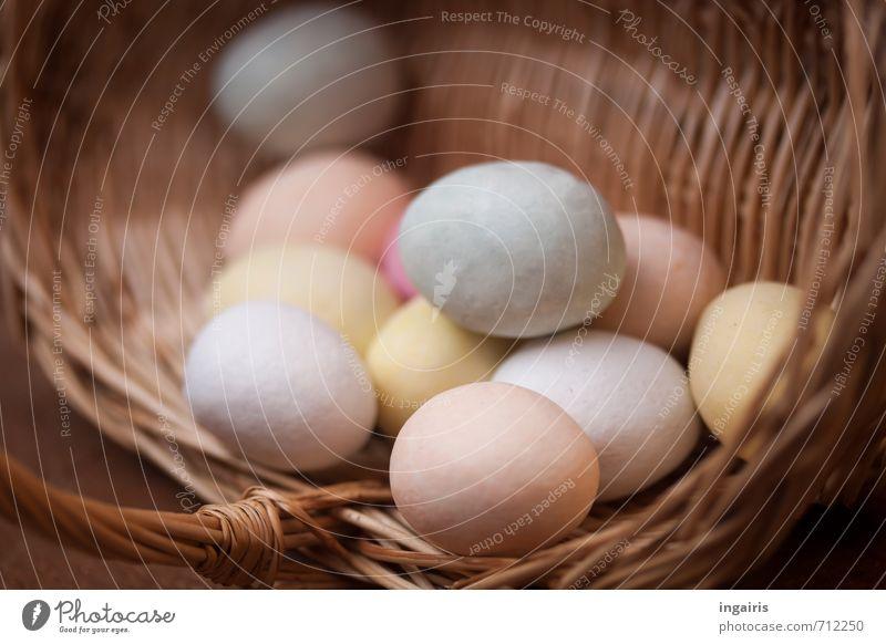Ei Ei Ei Osterei Lebensmittel Marzipan Korb Feste & Feiern Ostern liegen rund blau gelb rosa Kultur Dekoration & Verzierung Oval Innenaufnahme Detailaufnahme