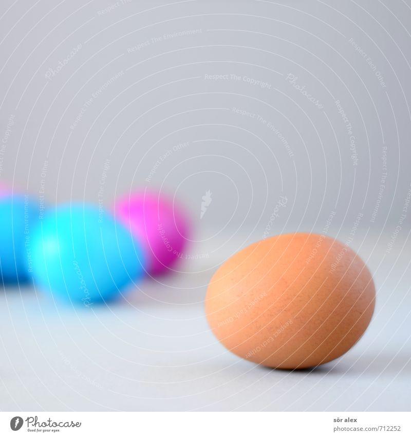 Vorher-Nachher-Bild Lebensmittel Ernährung Essen Frühstück Ei Veranstaltung Feste & Feiern Ostern blau braun grau rot Religion & Glaube Tradition Hühnerei
