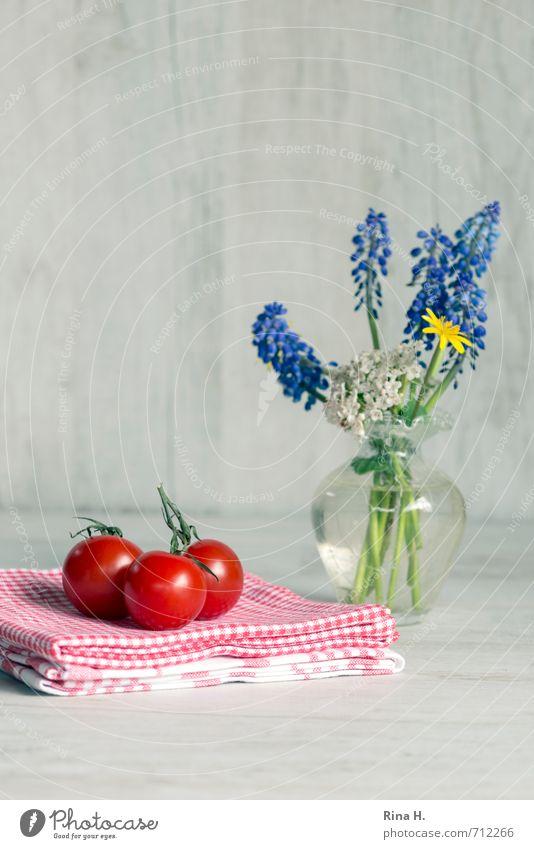 Still mit Tomaten rot Blume Frühling Gesundheit hell Ernährung Gemüse lecker Stillleben kariert ländlich Vase Vegetarische Ernährung Handtuch Frühlingsblume