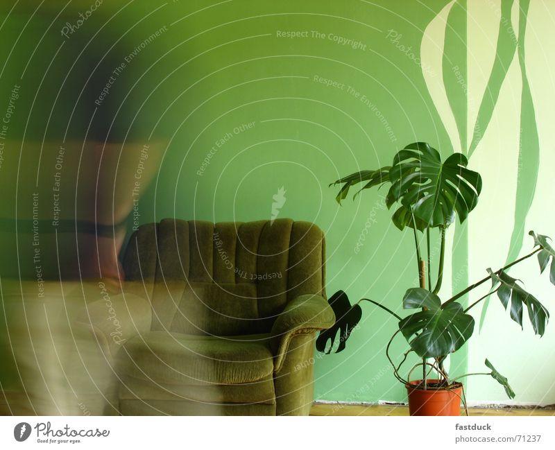 flüchtig grün Pflanze Erholung Wand Bewegung laufen Stuhl Stoff Umzug (Wohnungswechsel) Reihe Parkett