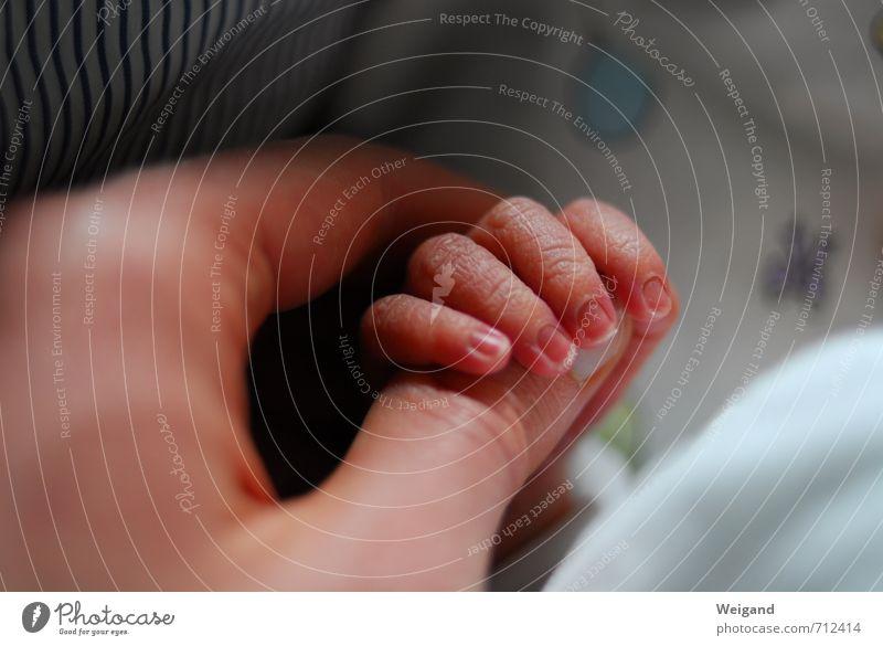 Alles im Griff Mensch Kind blau Hand Familie & Verwandtschaft klein Geburtstag Baby Finger Bett Flugzeugstart Verbindung Krankenhaus 0-12 Monate Halt Geburt