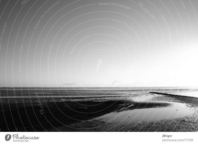 Sandspur Strand Ebbe Sonnenuntergang ruhig Wolken Licht Außenaufnahme Schwarzweißfoto Nordsee Ferne