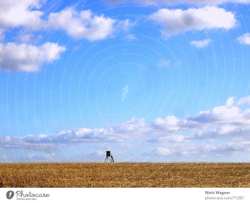 1 Raumwohnung blau Wolken gelb Holz Feld Aussicht Amerika Hochsitz Stoppel Rapsfeld