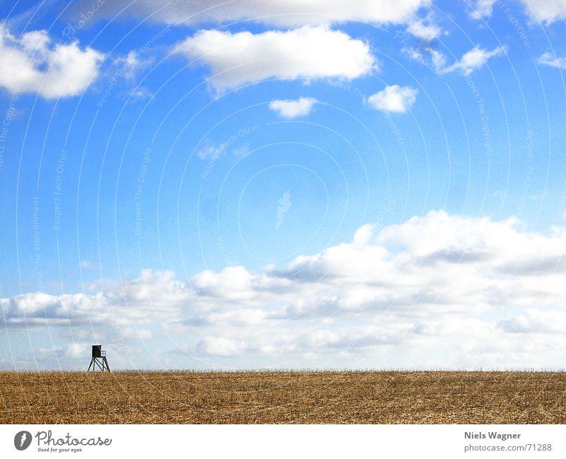 1 Raumwohnung 2 blau Wolken gelb Holz Feld Aussicht Amerika Hochsitz Stoppel Rapsfeld