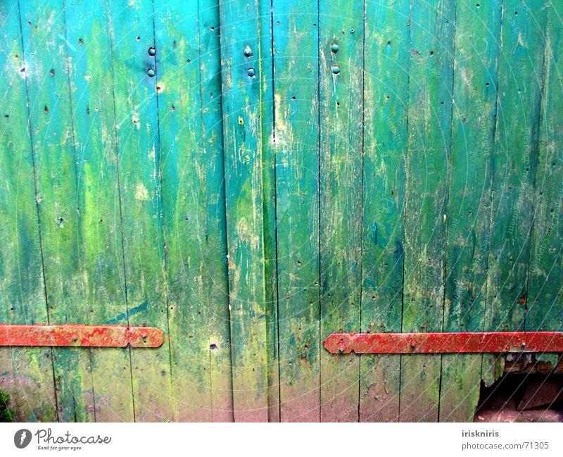 Tor zur Welt aufmachen Scharnier Bauernhof grün rot abblättern Anstrich Tür Farbe blau Loch katzenloch alt Bodenbelag trekker Fantasygeschichte tor zur welt